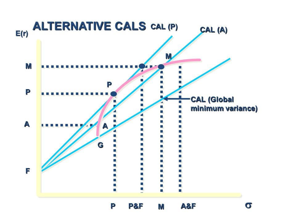 ALTERNATIVE CALS s CAL (P) CAL (A) E(r) M M P P CAL (Global
