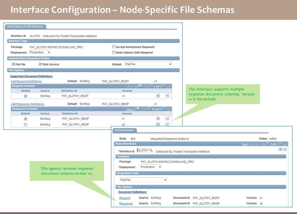 Interface Configuration – Node-Specific File Schemas
