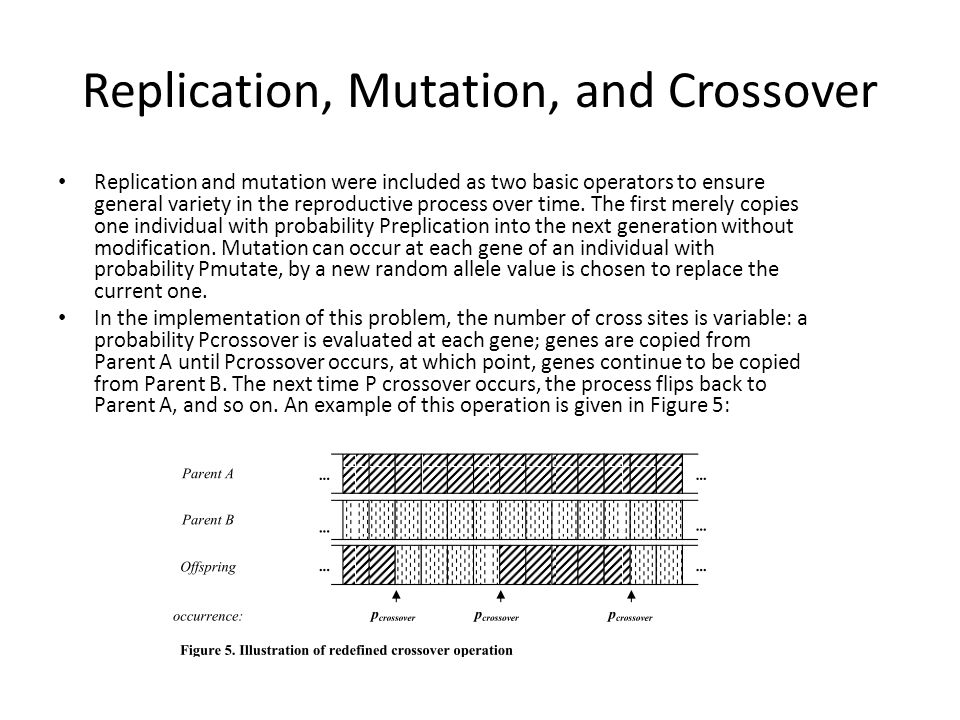Replication, Mutation, and Crossover