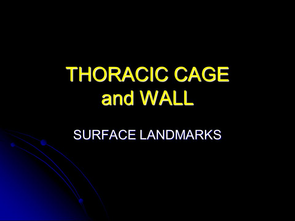THORACIC CAGE and WALL SURFACE LANDMARKS