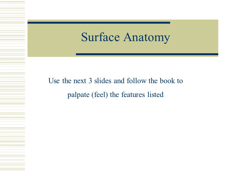 Surface Anatomy Use the next 3 slides and follow the book to