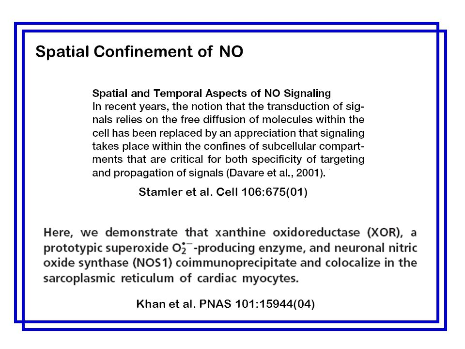 Spatial Confinement of NO