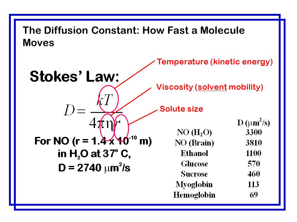 The Diffusion Constant: How Fast a Molecule Moves
