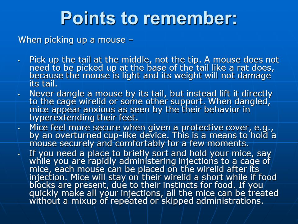 Points to remember: When picking up a mouse –