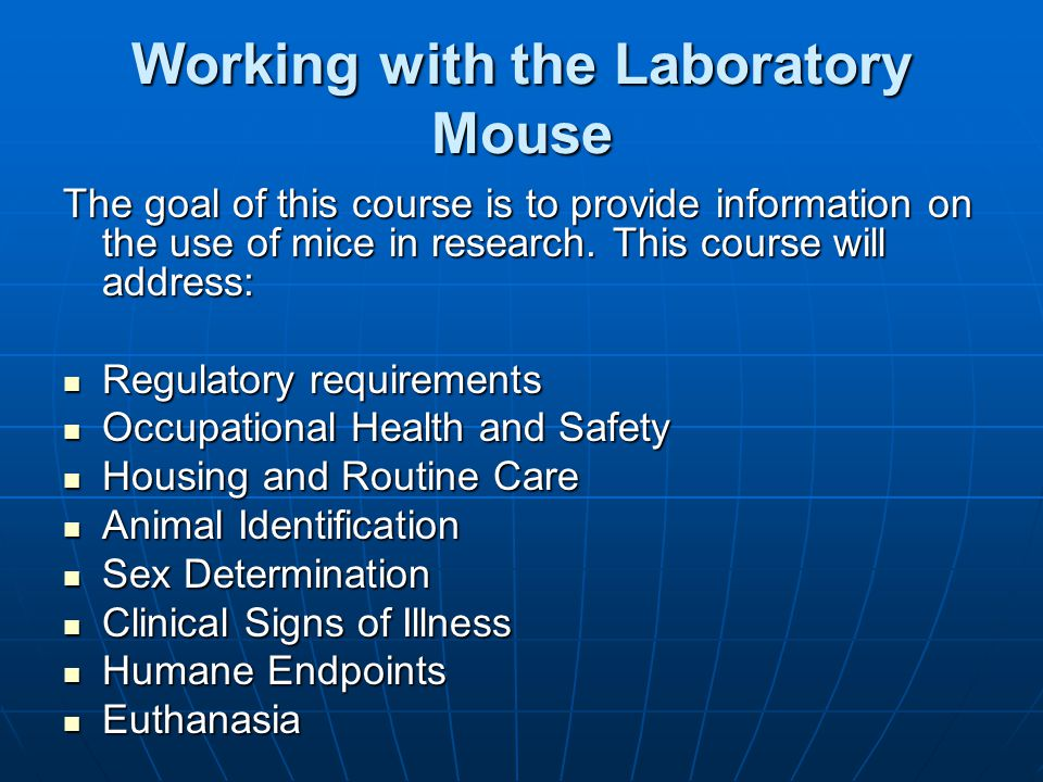 Working with the Laboratory Mouse