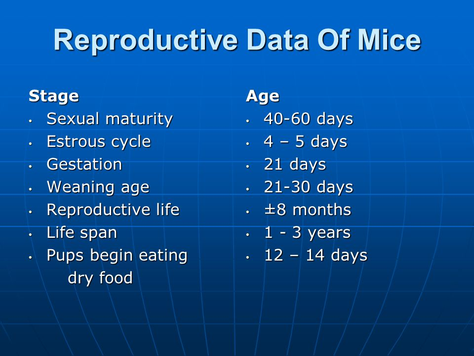 Reproductive Data Of Mice