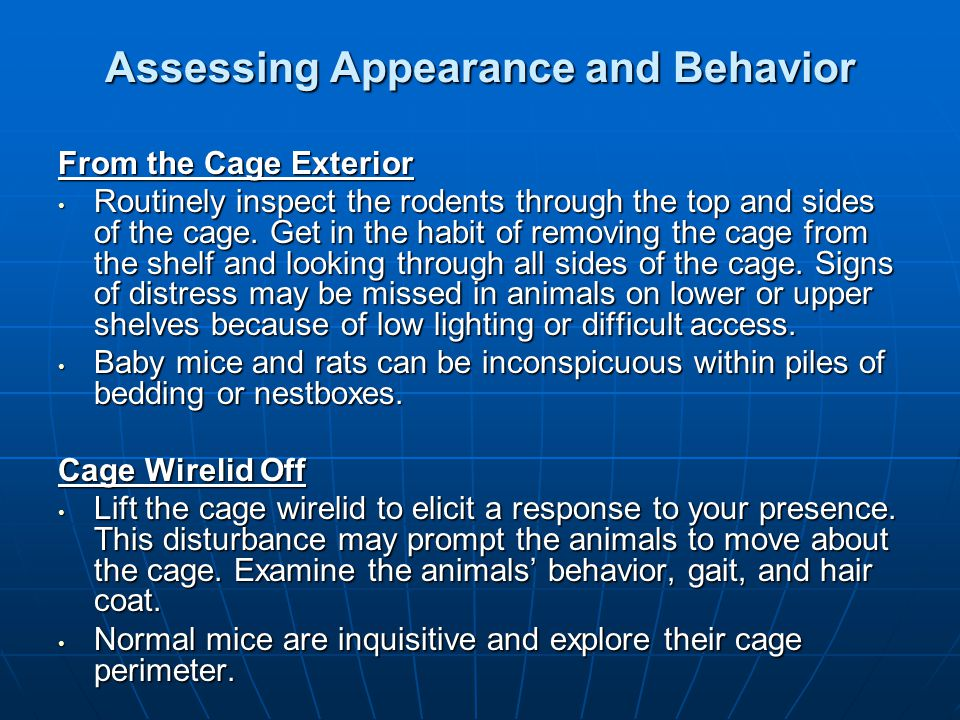 Assessing Appearance and Behavior