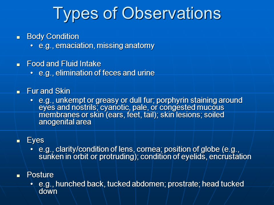 Types of Observations Body Condition e.g., emaciation, missing anatomy