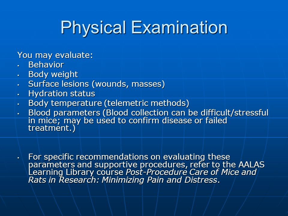 Physical Examination You may evaluate: Behavior Body weight