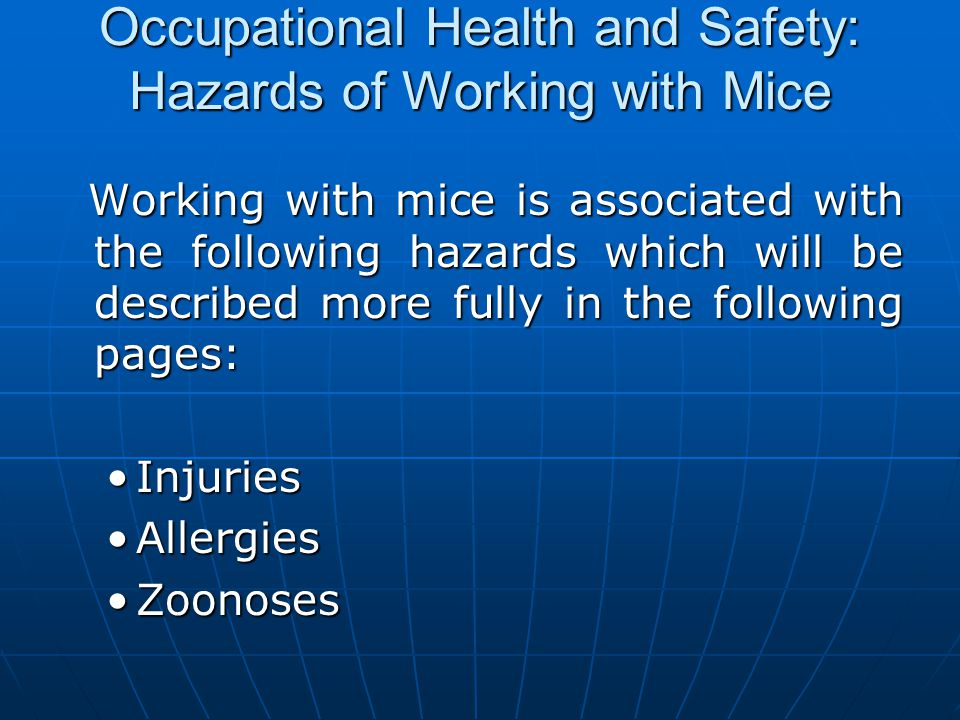 Occupational Health and Safety: Hazards of Working with Mice