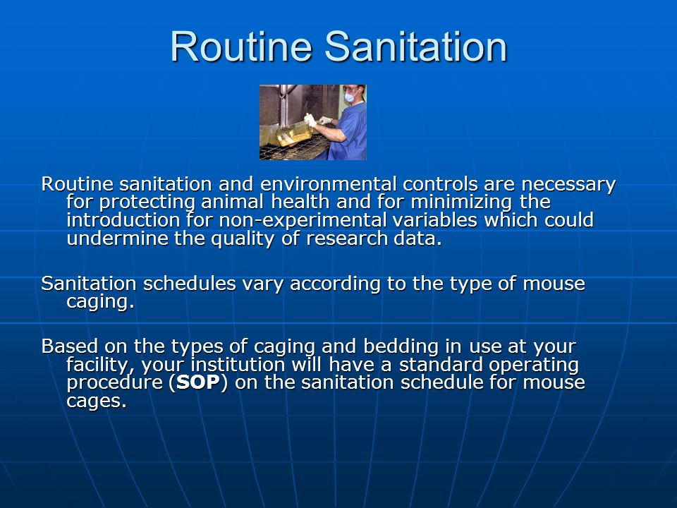 Routine Sanitation