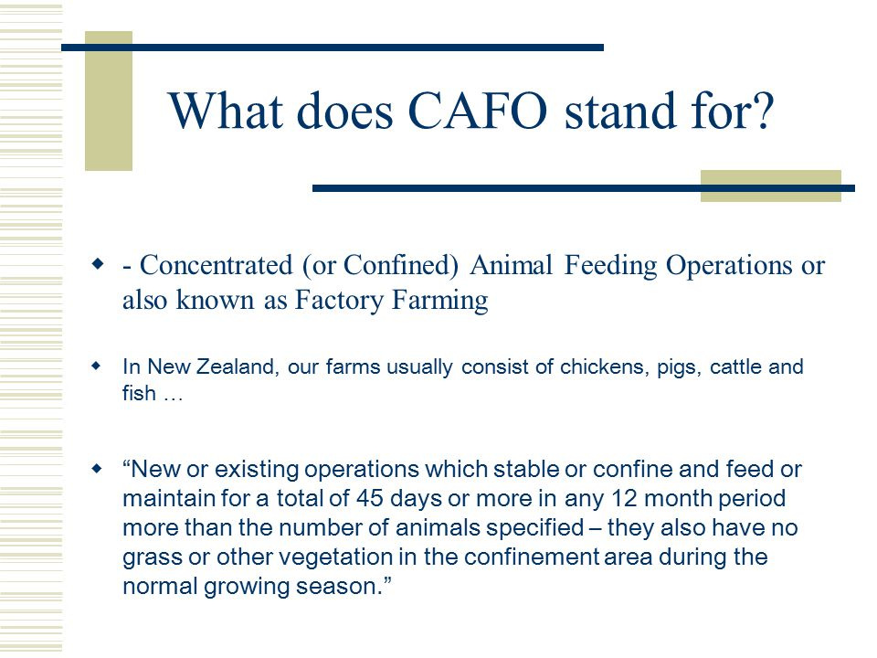 What does CAFO stand for