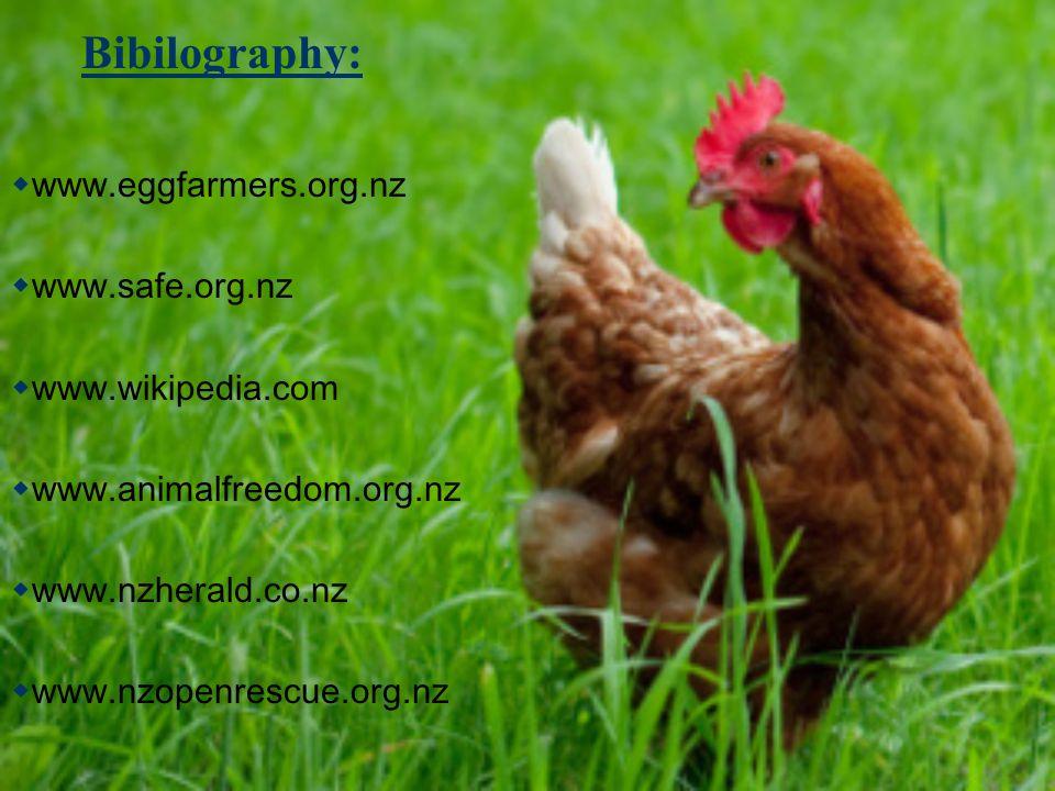 Bibilography: www.eggfarmers.org.nz www.safe.org.nz www.wikipedia.com