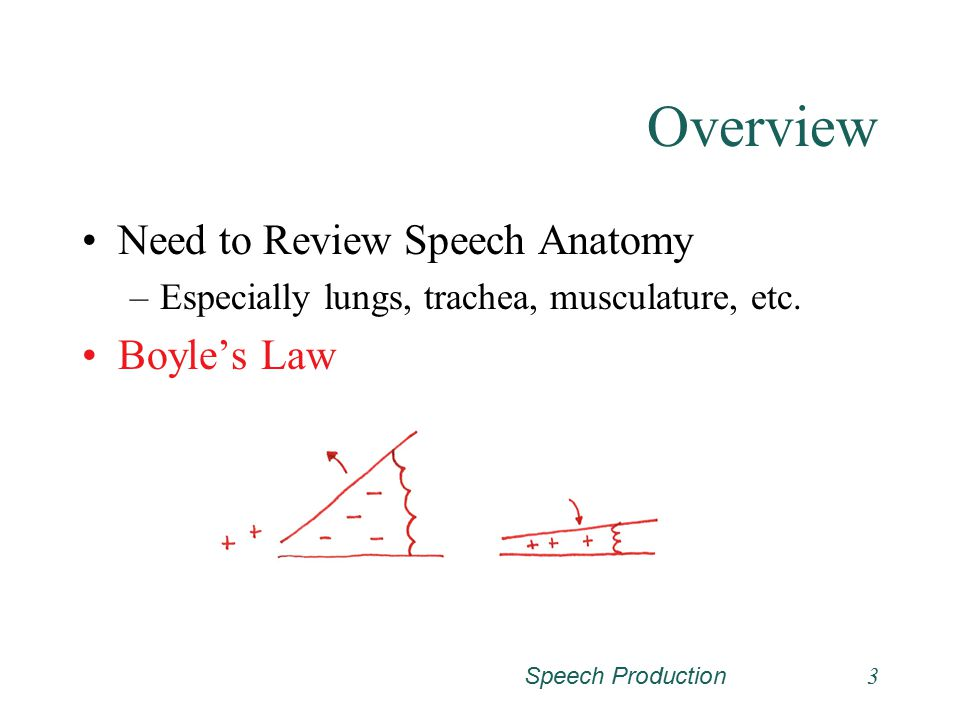 Overview Need to Review Speech Anatomy Boyle's Law