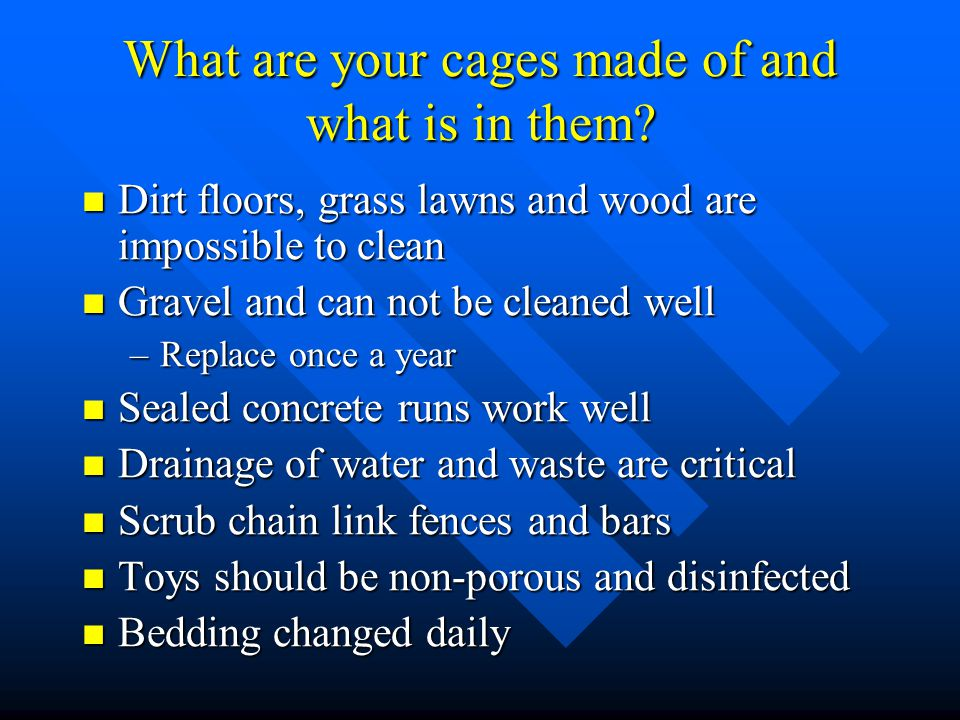 What are your cages made of and what is in them