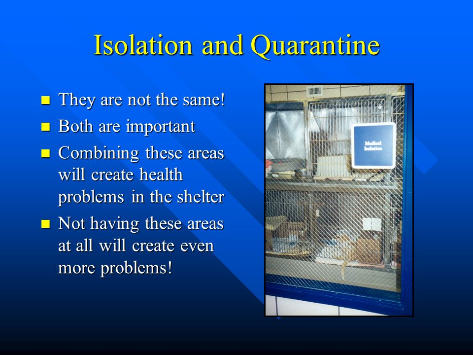 Isolation and Quarantine