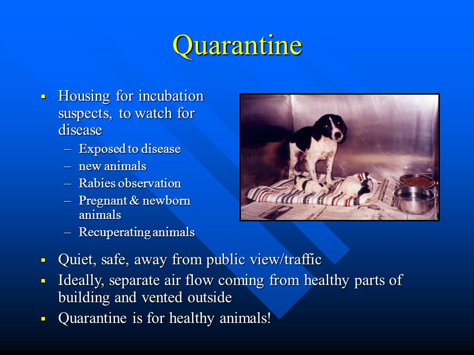 Quarantine Housing for incubation suspects, to watch for disease