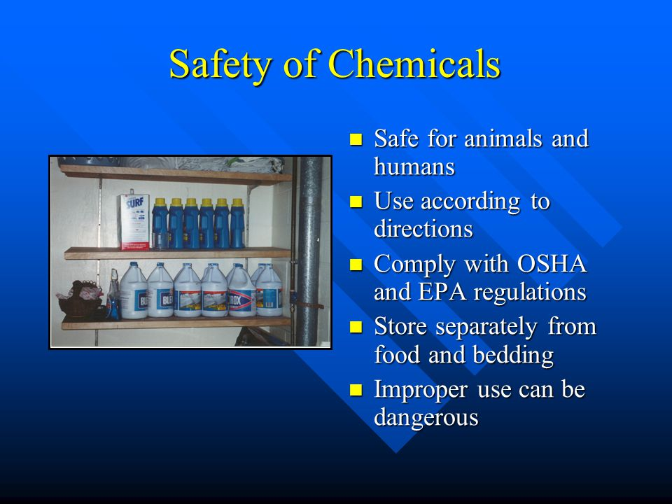 Safety of Chemicals Safe for animals and humans
