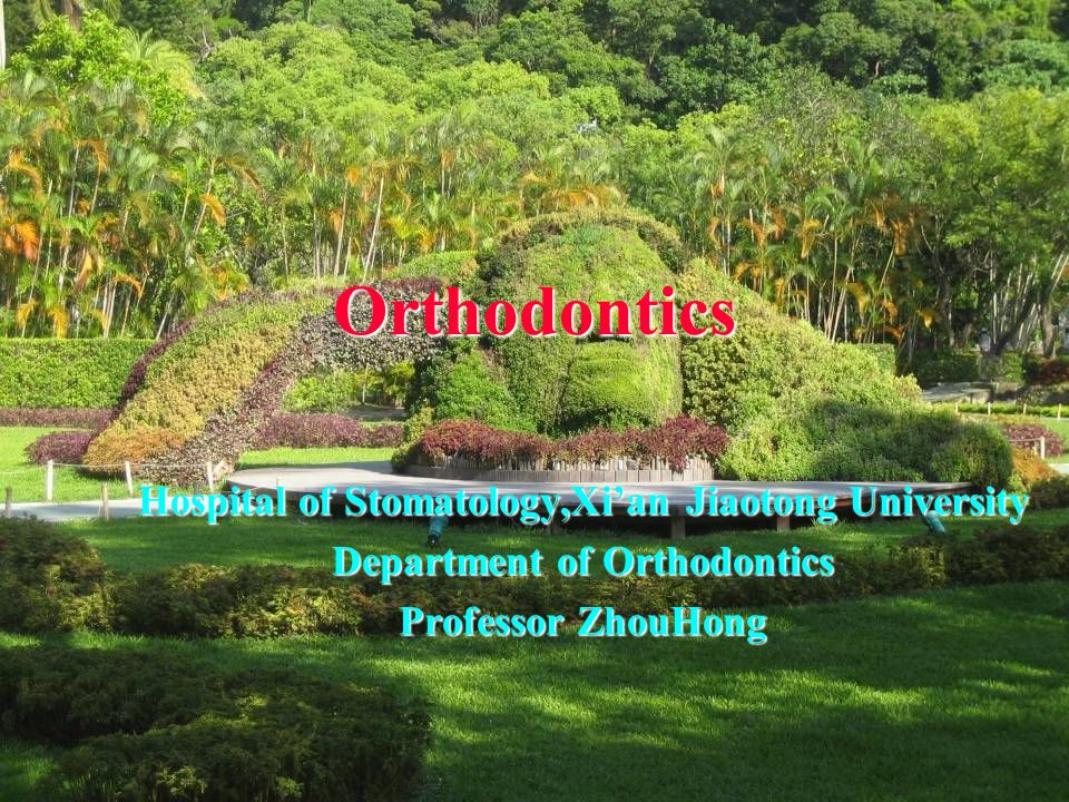 Orthodontics Hospital of Stomatology,Xi'an Jiaotong University
