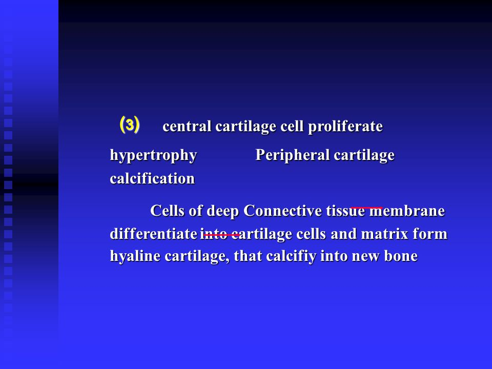 ⑶ central cartilage cell proliferate hypertrophy