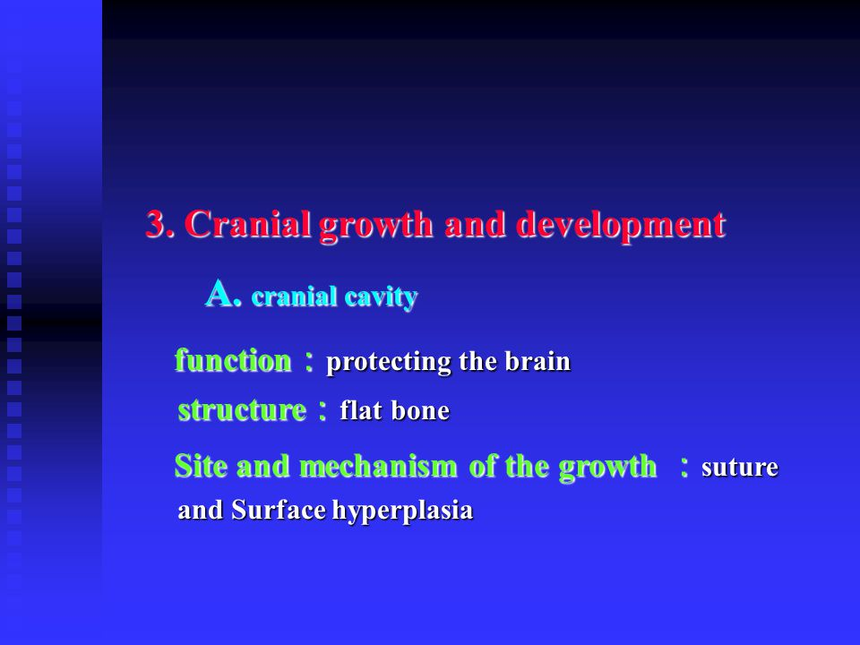 3. Cranial growth and development A. cranial cavity