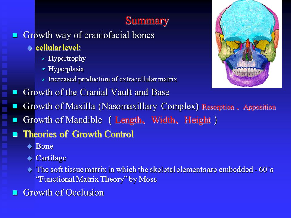 Summary Growth way of craniofacial bones