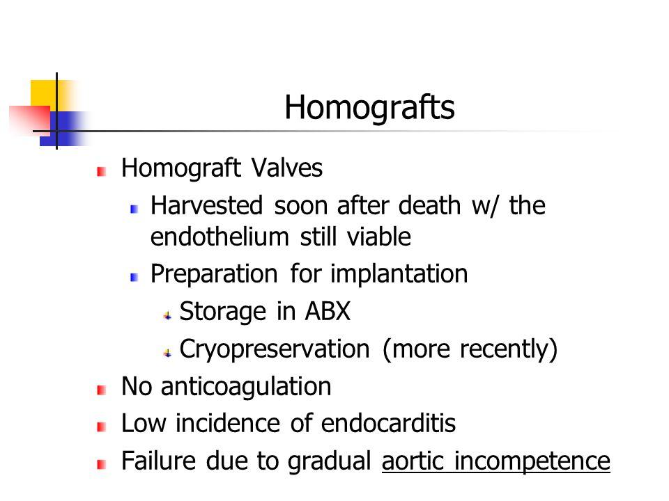 Homografts Homograft Valves
