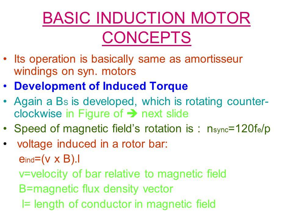 BASIC INDUCTION MOTOR CONCEPTS