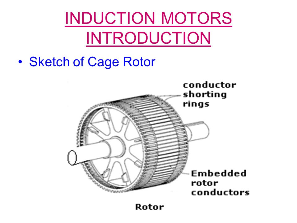 INDUCTION MOTORS INTRODUCTION