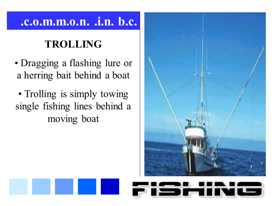 .c.o.m.m.o.n. .i.n. b.c. TROLLING. Dragging a flashing lure or a herring bait behind a boat.