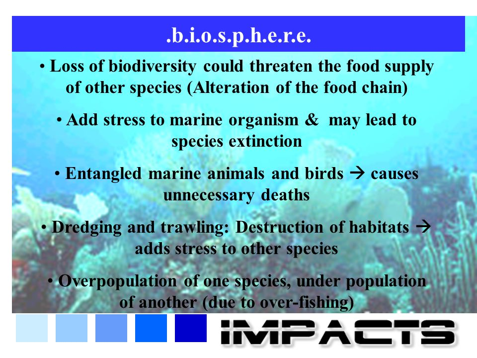 .b.i.o.s.p.h.e.r.e. Loss of biodiversity could threaten the food supply of other species (Alteration of the food chain)