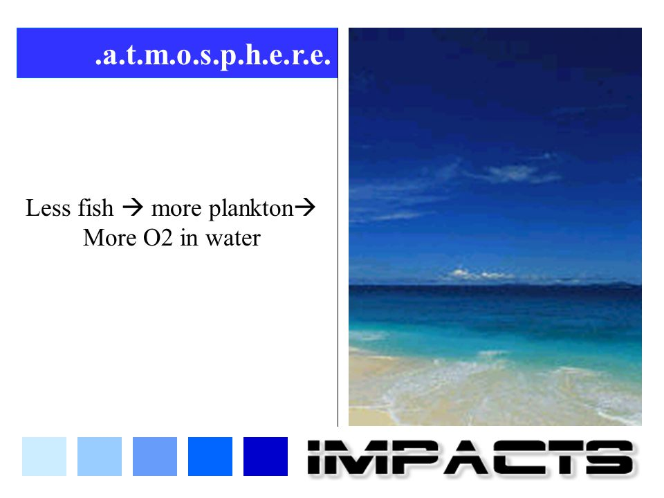 Less fish  more plankton More O2 in water