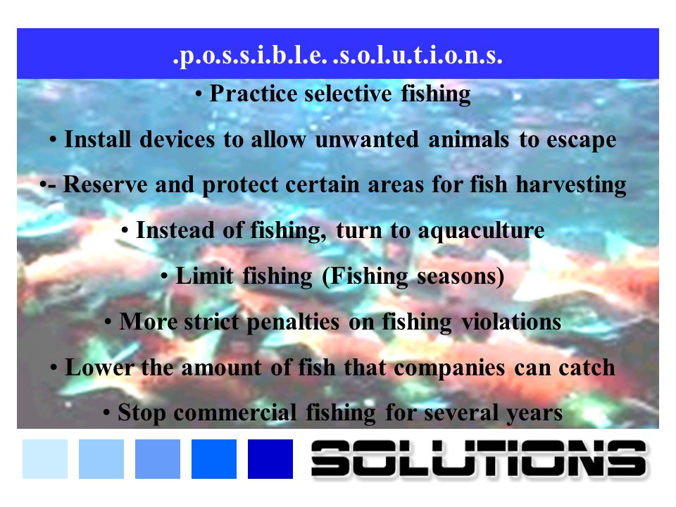 .p.o.s.s.i.b.l.e. .s.o.l.u.t.i.o.n.s. Practice selective fishing. Install devices to allow unwanted animals to escape.
