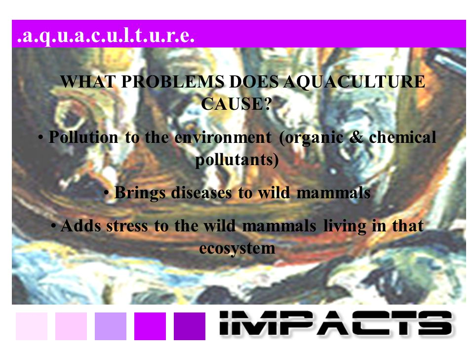 .a.q.u.a.c.u.l.t.u.r.e. WHAT PROBLEMS DOES AQUACULTURE CAUSE Pollution to the environment (organic & chemical pollutants)