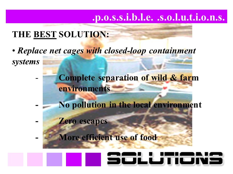.p.o.s.s.i.b.l.e. .s.o.l.u.t.i.o.n.s. THE BEST SOLUTION: