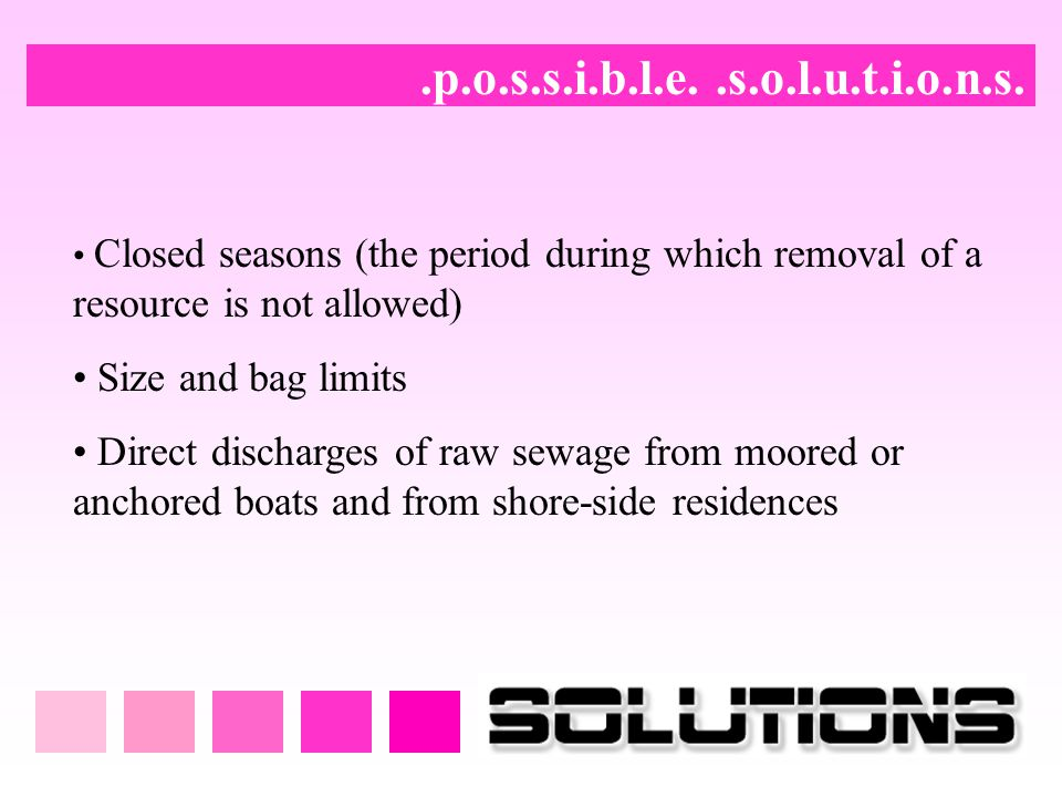 .p.o.s.s.i.b.l.e. .s.o.l.u.t.i.o.n.s. Size and bag limits