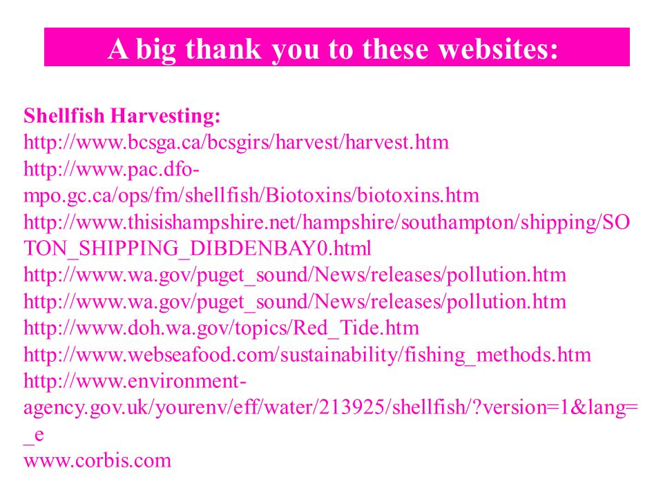 A big thank you to these websites: