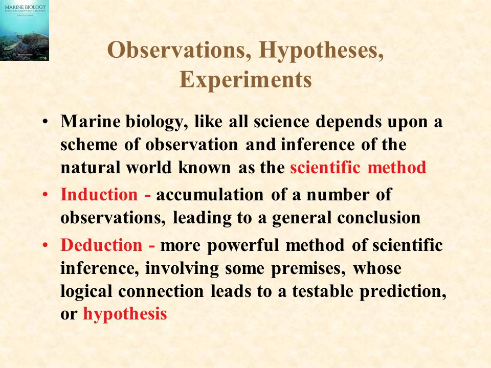 Observations, Hypotheses, Experiments