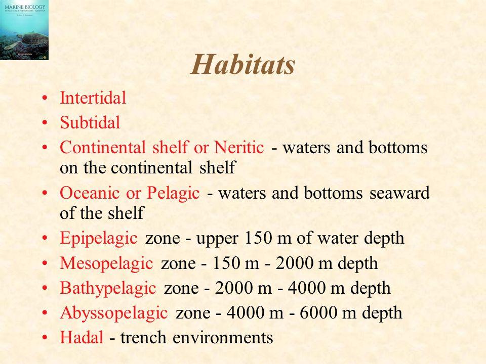 Habitats Intertidal Subtidal