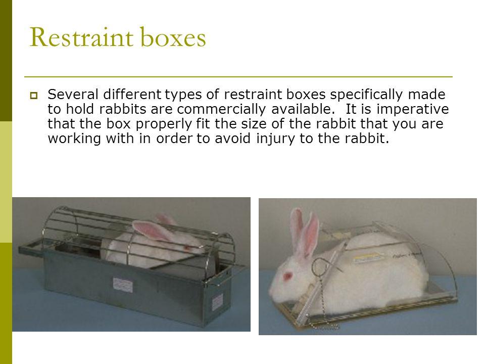 Restraint boxes