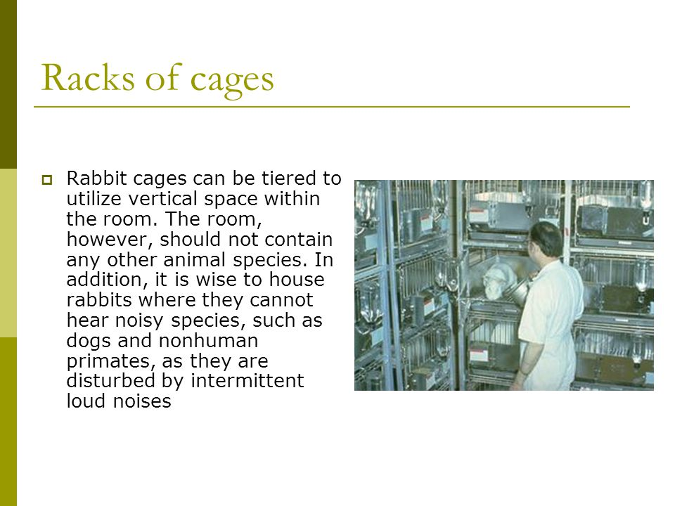 Racks of cages