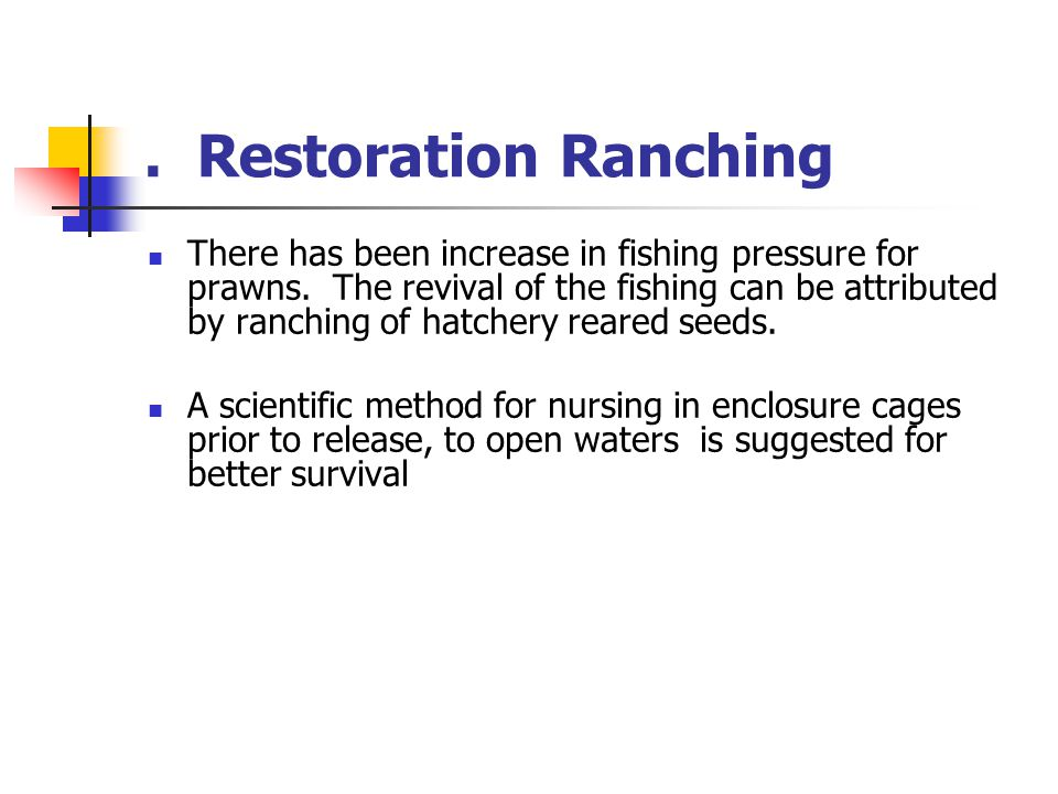 . Restoration Ranching