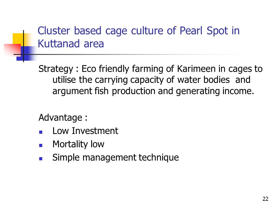 Cluster based cage culture of Pearl Spot in Kuttanad area