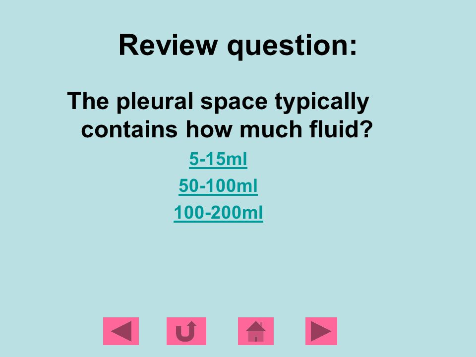 The pleural space typically contains how much fluid