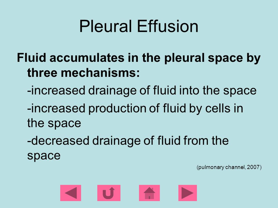 Pleural Effusion Fluid accumulates in the pleural space by three mechanisms: -increased drainage of fluid into the space.
