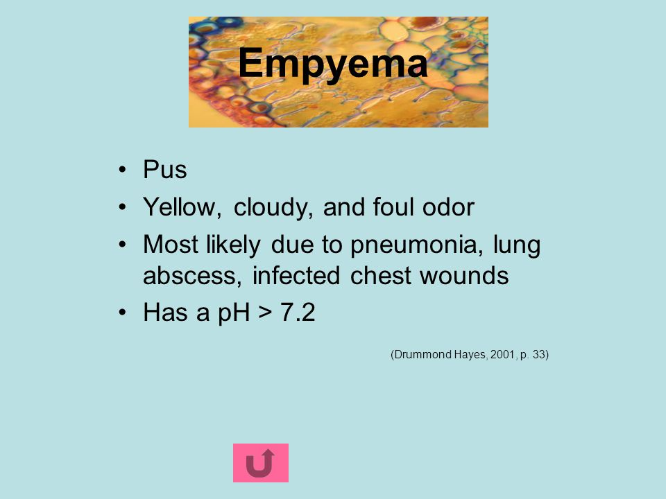 Empyema Pus Yellow, cloudy, and foul odor