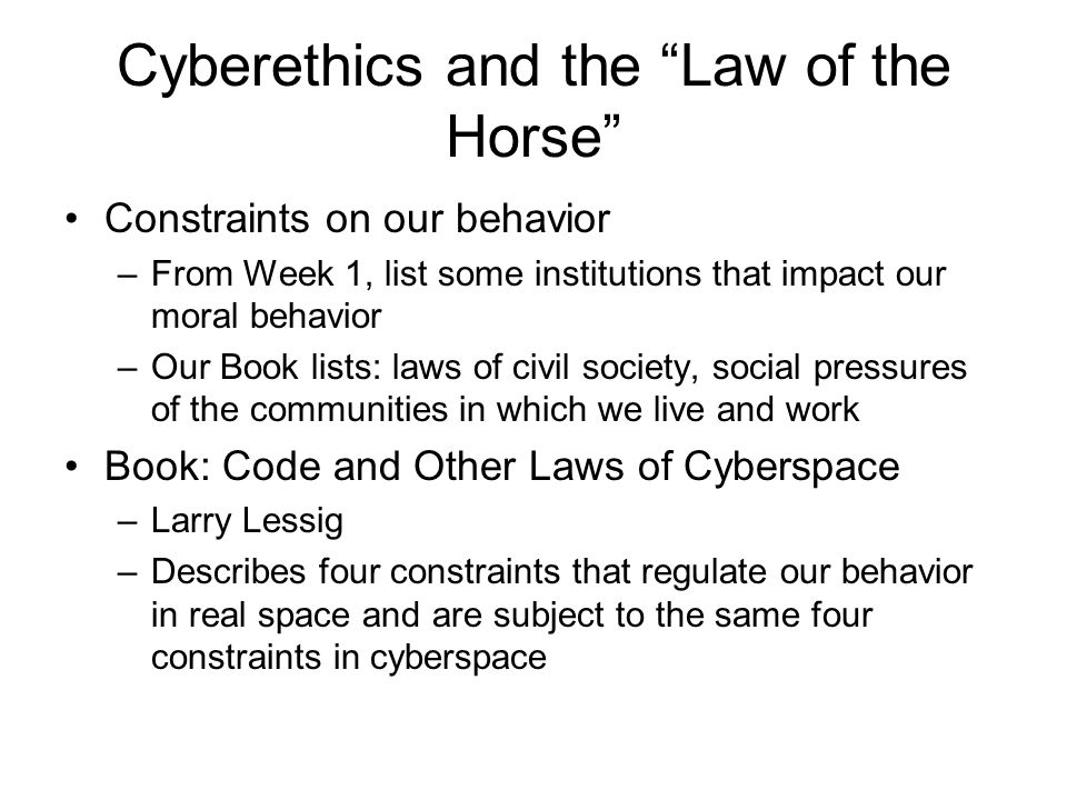 Cyberethics and the Law of the Horse