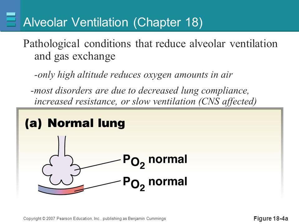 Alveolar Ventilation (Chapter 18)