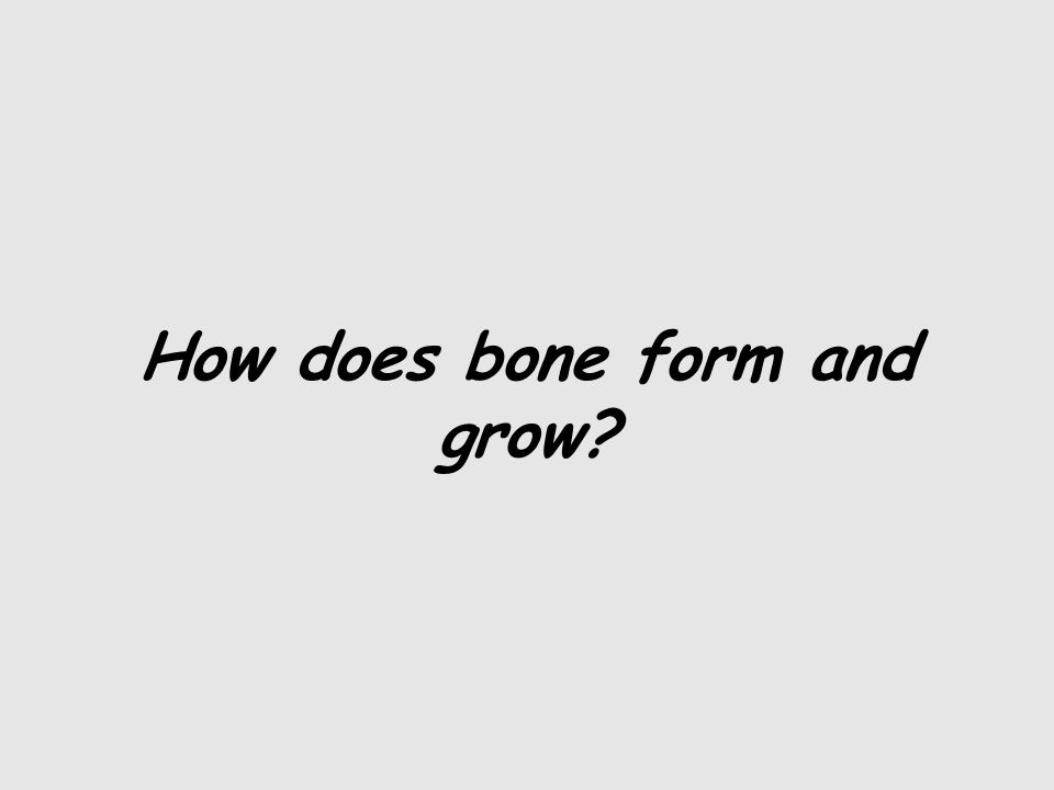 How does bone form and grow