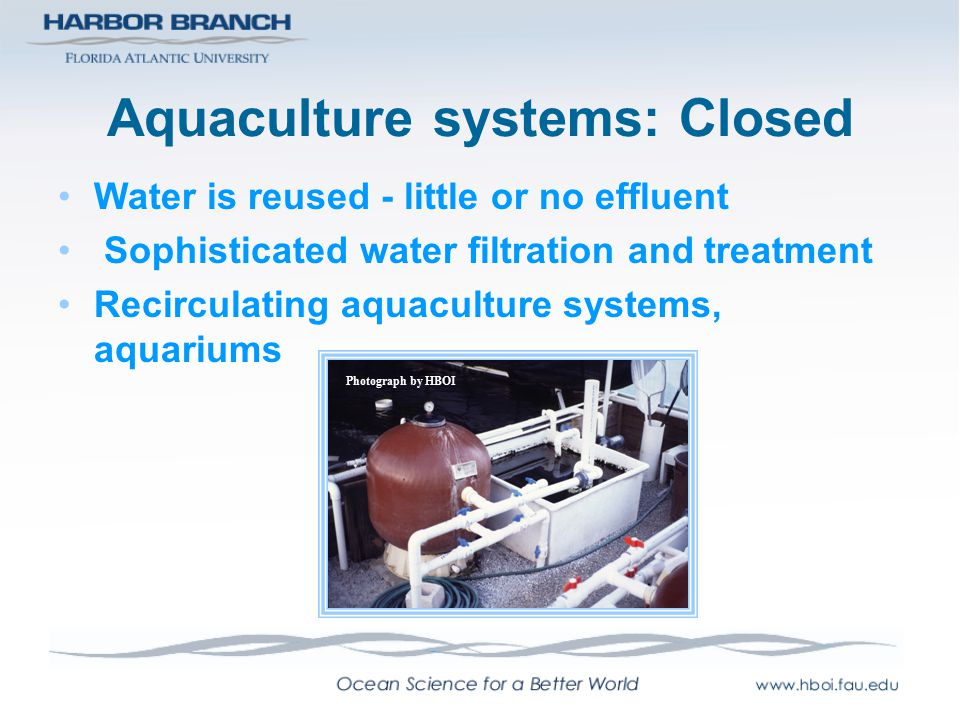 Aquaculture systems: Closed